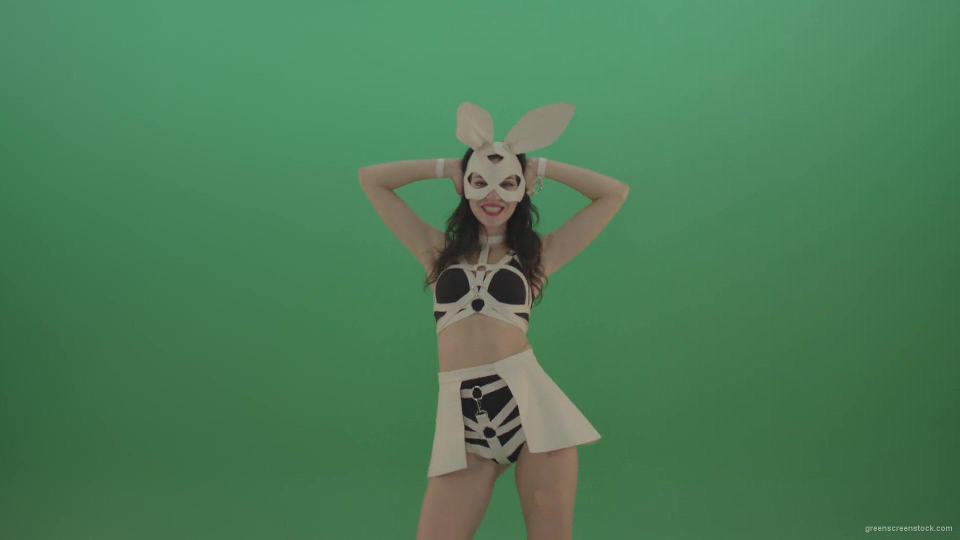 Sexy Bunny Video photo 16